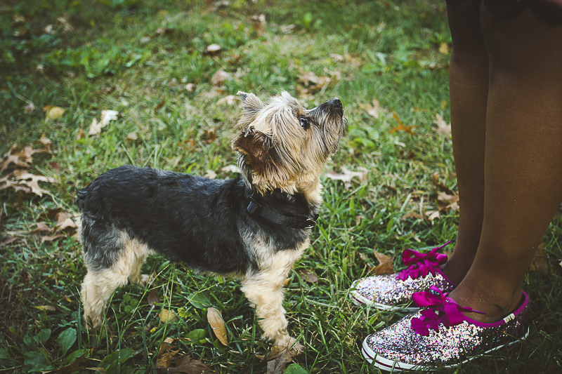 dog and sparkly shoes, cute pet photography ideas ©Aim With Mia Photography, St Louis, MO, lifestyle family portraits,