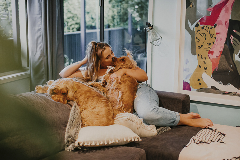 woman and her cocker spaniels on the sofa, ©Dogfolk lifestyle pet photography