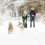 Happy Tails:  Pierre and Topher | Snowy Pet Portraits