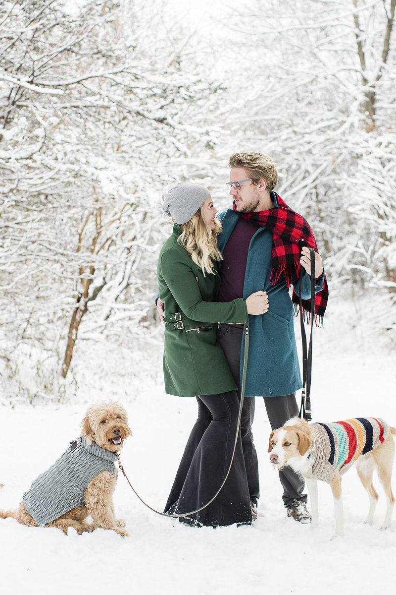 ©Lauren Engfer Photography, winter family portrait ideas, dogs and their people in the snow