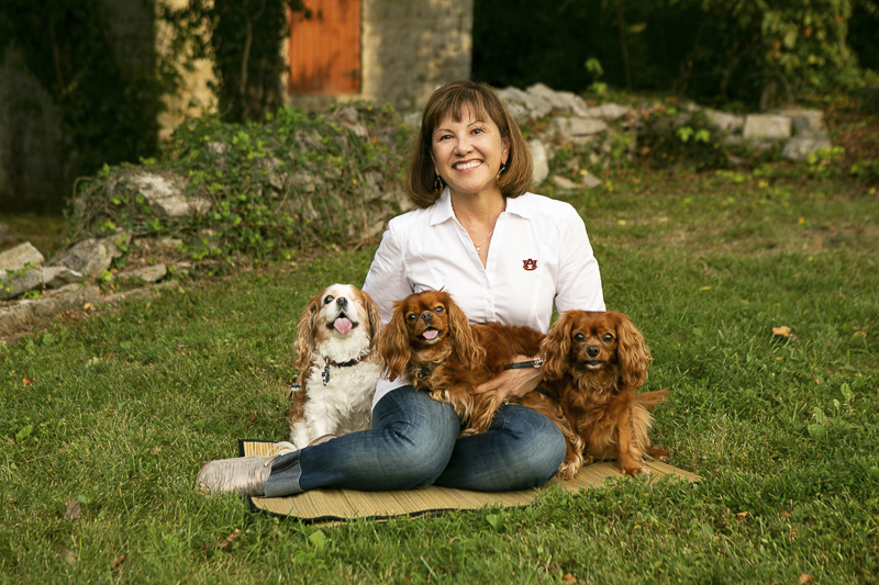 woman sitting on ground with Cavaliers | ©Mandy Whitley Photography | lifestyle dog portraits