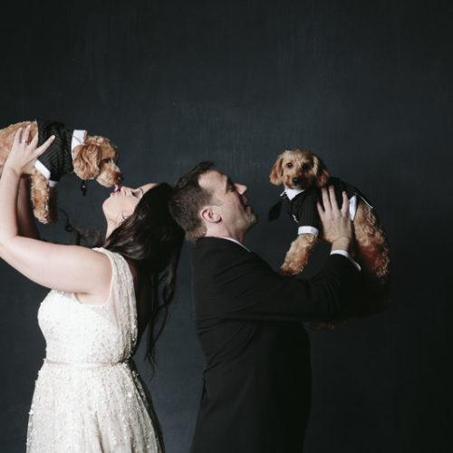 Baloo and Mowgli | Studio Engagement Session With Dogs