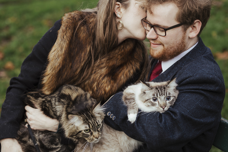 woman kissing man, while holding cats on their laps, ©Olga Hogan Photography | cat-friendly engagement photos, Dublin, Ireland