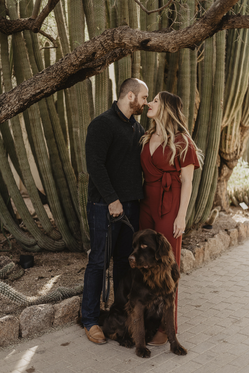 ©Traci Edwards Photography | lifestyle dog photography, Newfie and couple in Desert Botanical Gardens