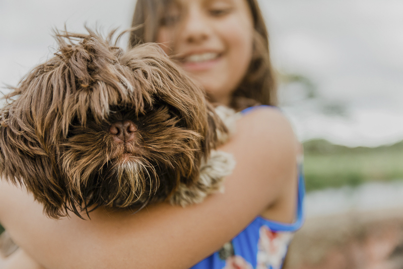 small brown dog in girl's arms, family photos with a dog | ©Storm Elaine Photography