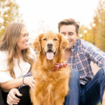 Engaging Tails:  Gus the Golden Retriever