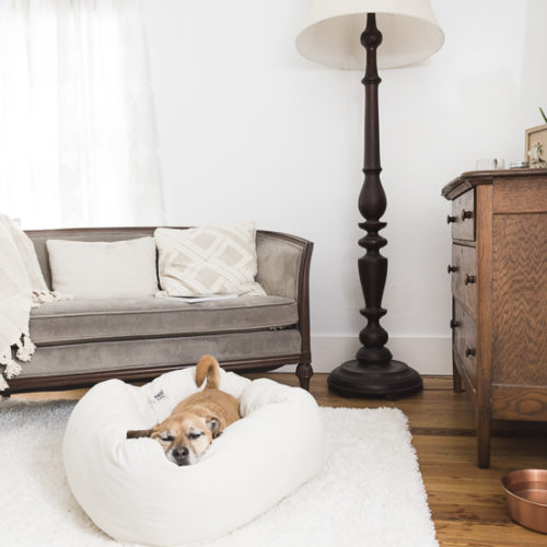 Nest Bedding – Bolster Bed for Dogs Review