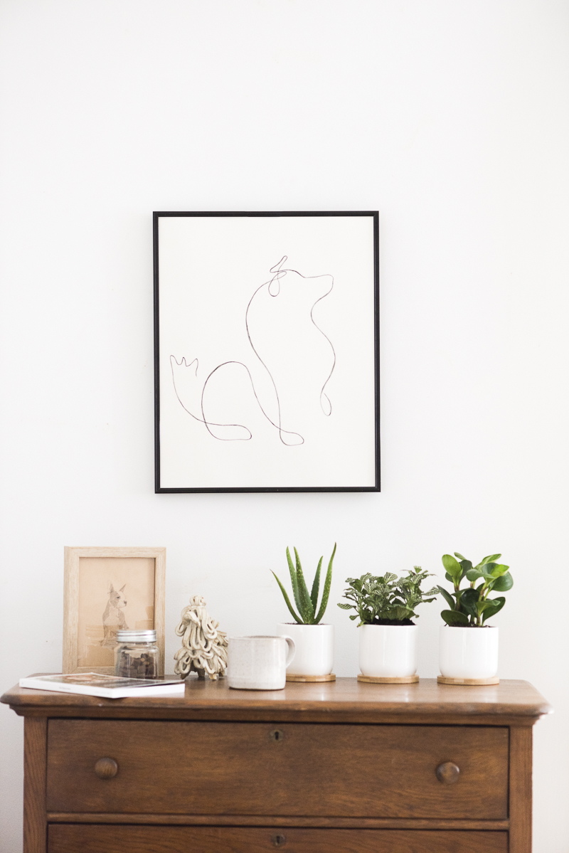 line drawing of dog, ceramic pots for plants, vintage furniture, ©Alice G Patterson Photography | Syracuse commercial and editorial photography