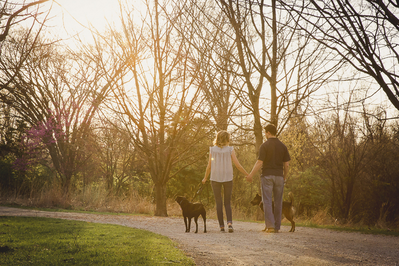 couple holding hands and walking dogs, Patterdale terrier, ©Irish Eyes Photography | St Louis Pet Photography