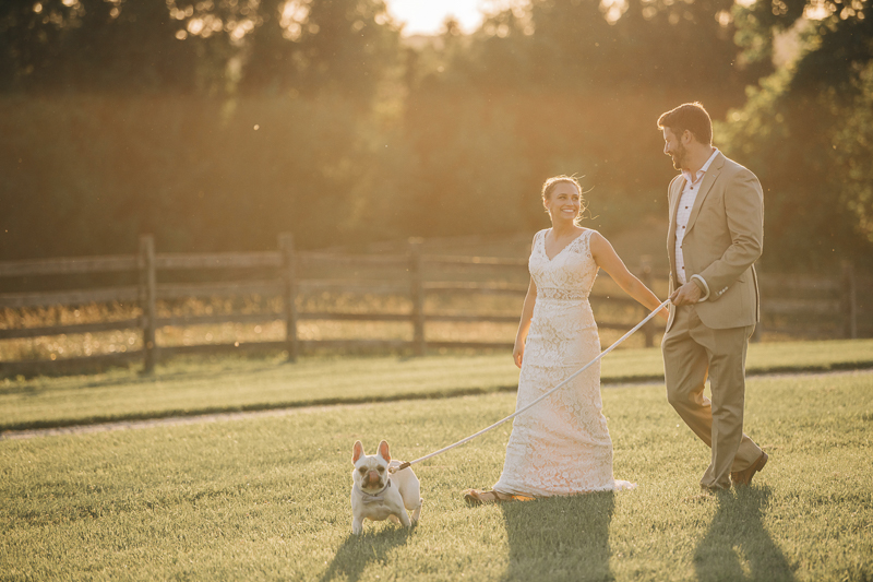 bride and groom walking their dog on the lawn, Landrum Photography   dog-friendly styled shoot at Bohemia Outlook