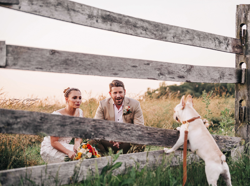bride and groom looking at their French Bulldog, rustic wedding ideas, creative dog photography