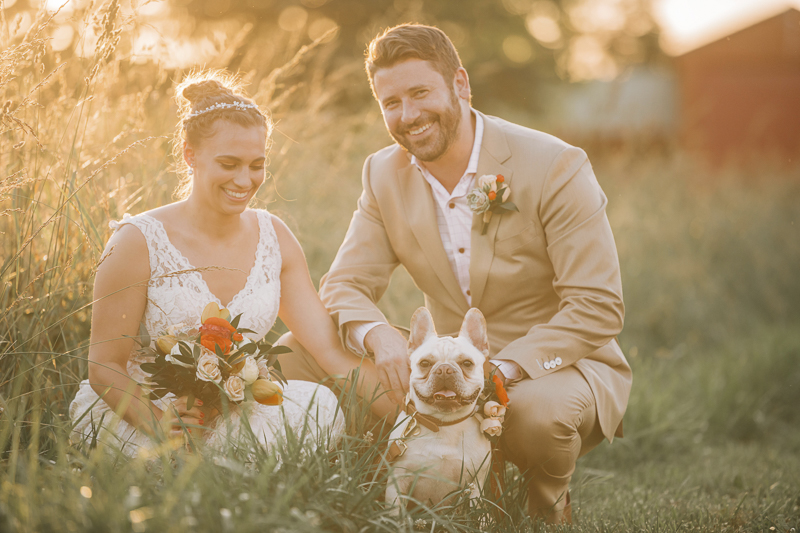 bride, groom and their dog in the grass, golden hour wedding portraits   Landrum Photography