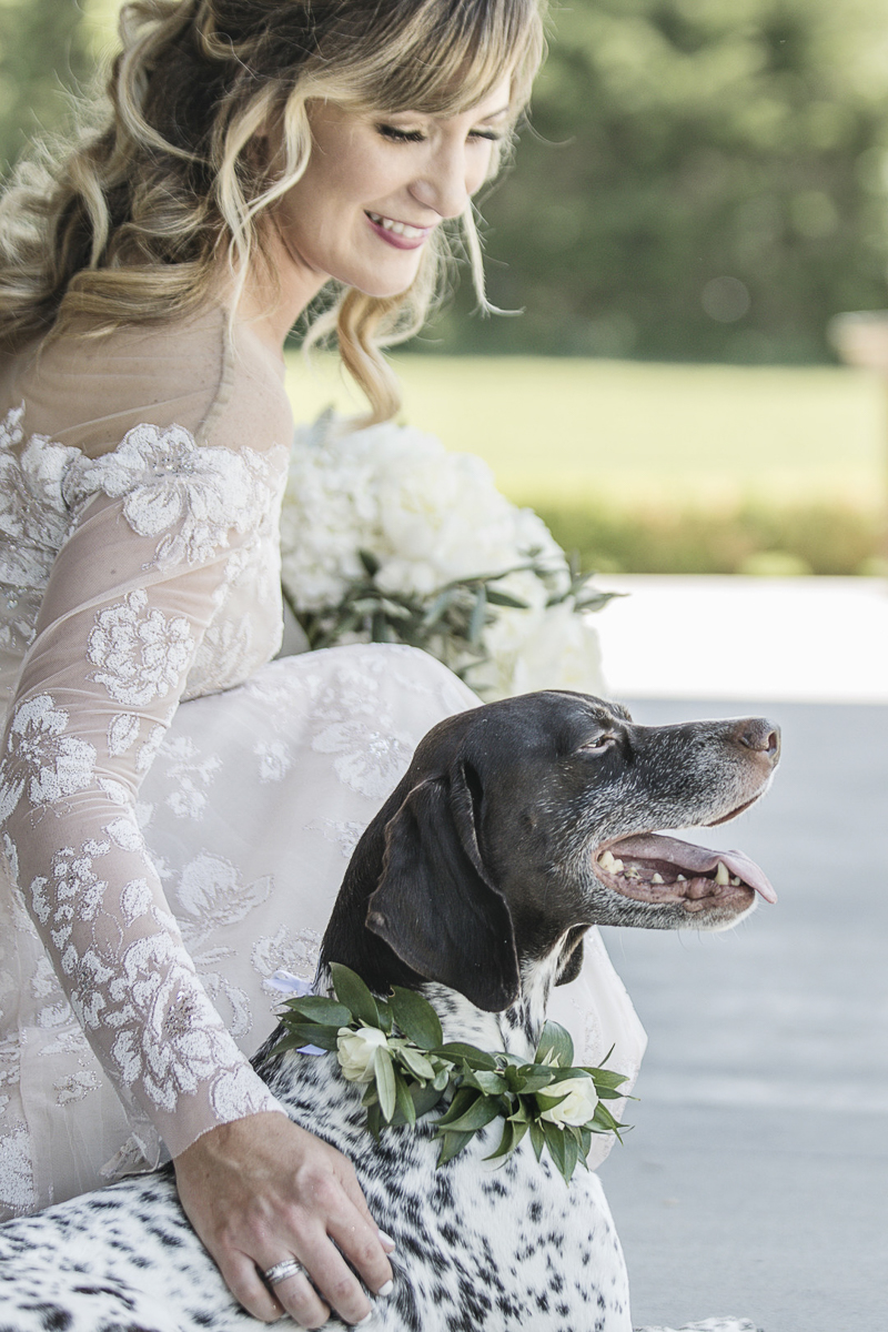 bride petting her dog, dogs in weddings, © epagaFOTO