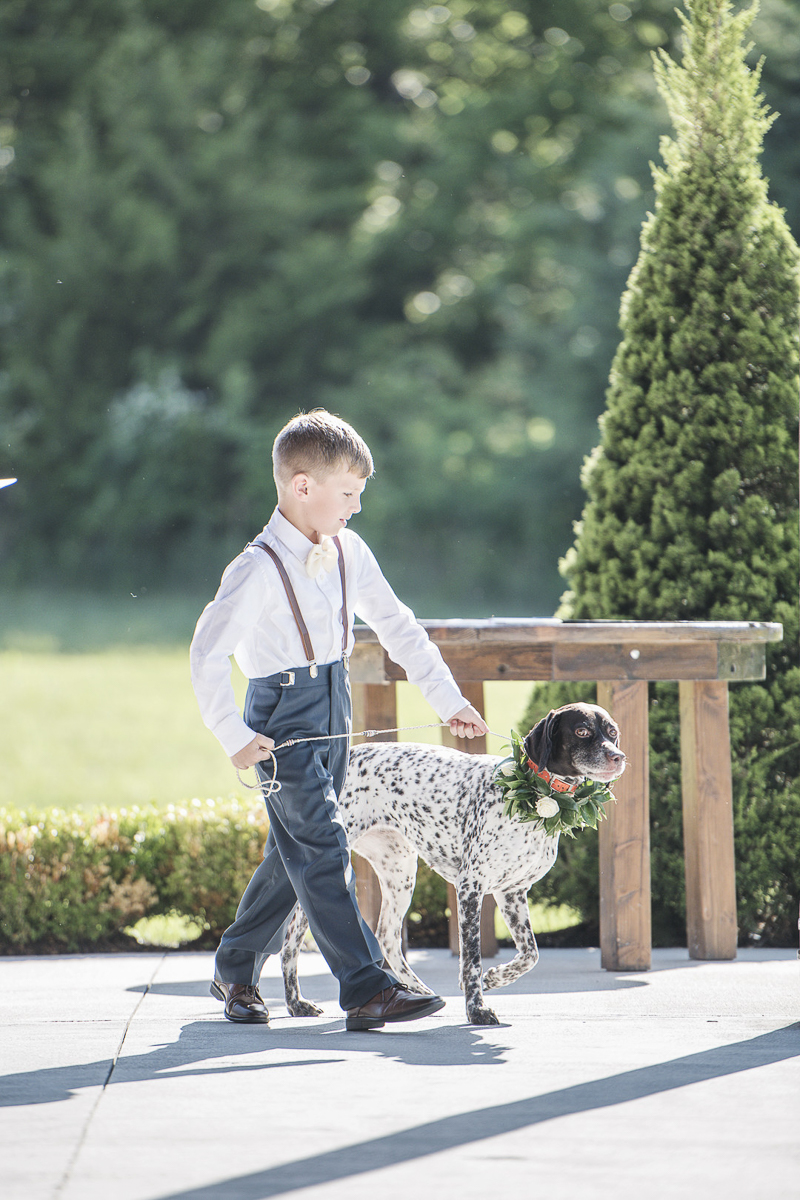 little boy walking dog in wedding ceremony, © epagaFOTO