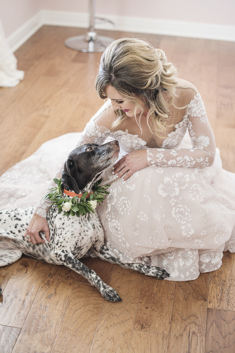 bride wearing blush wedding dress and her dog, German Shorthaired Pointer | © epagaFOTO | dog-friendly wedding, Buffalo Lodge. Kansas City