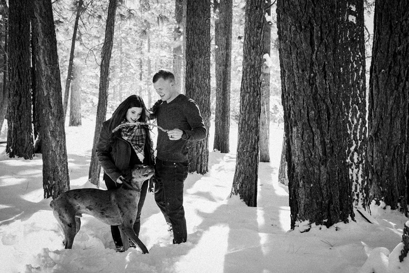 dog-friendly maternity session lake tahoe, ©misterdebs photography | lifestyle family and pet photography