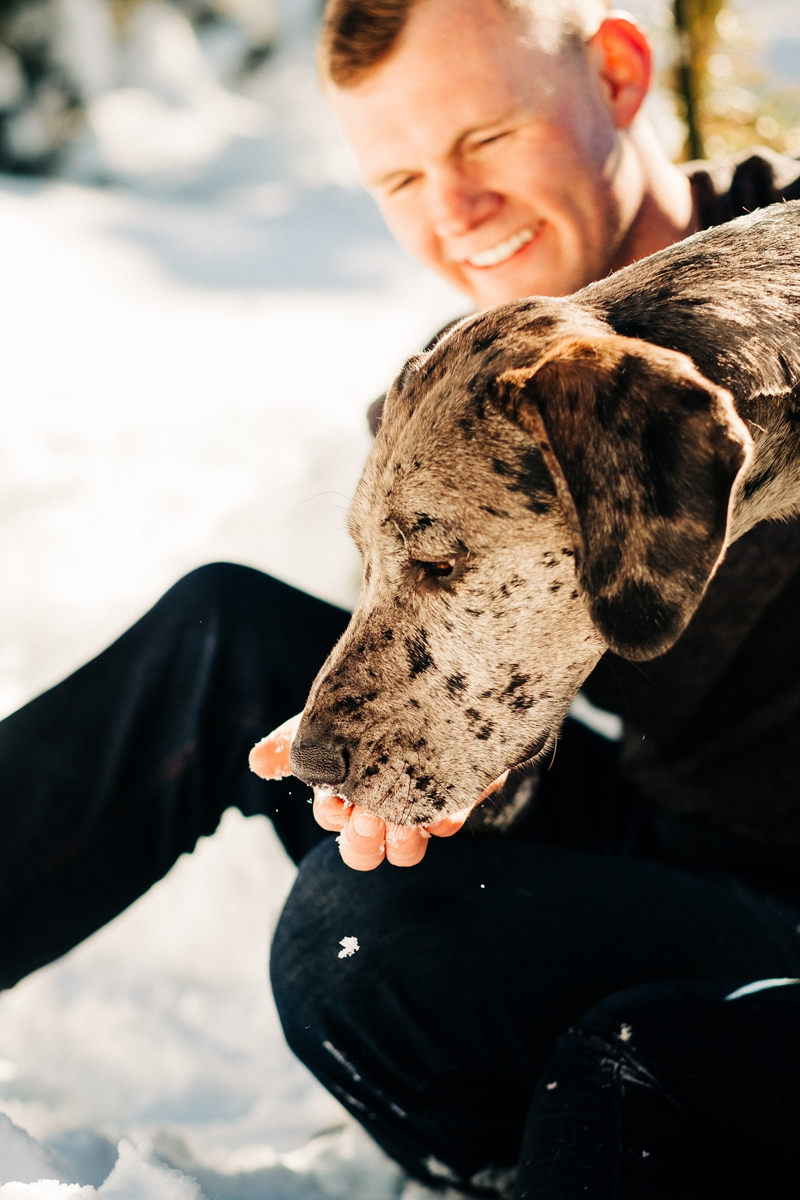 dog eating snow out of man's hand, wintery pet and family portraits, ©misterdebs photography