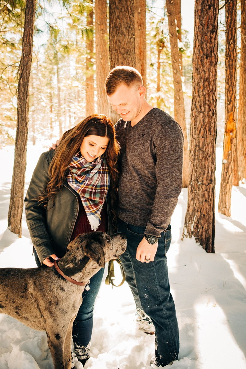 winter dog-friendly maternity session at South Lake Tahoe ©misterdebs photography