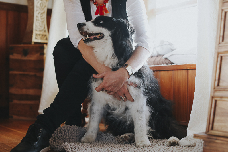 senior Border Collie and the woman who loves him, ©Dogfolk | Melbourne Pet Photographer | Storyteller - in home dog photography