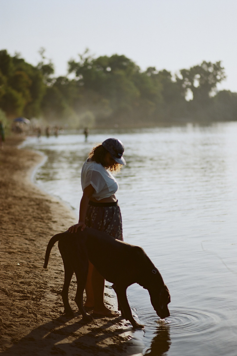 maternity session with a dog, lifestyle dog photography | ©Rachel Sima Photography | fine art dog portraits