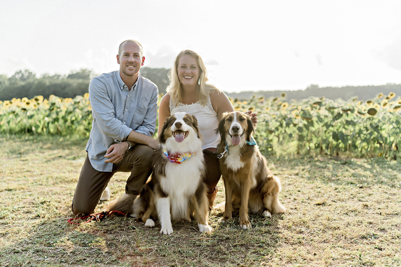 family photos at sunflower patch, ©Yesenia Bocanegra Photography | Raleigh dog photography