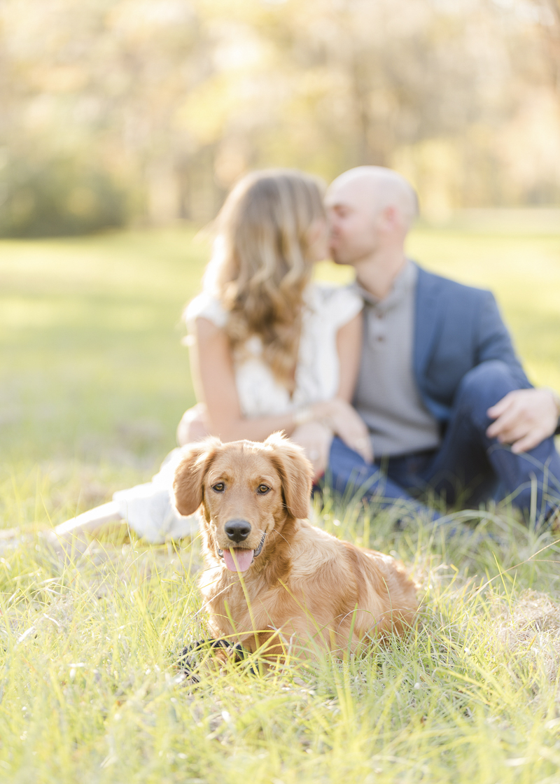 ©Alex & Dylan Photo & Video, engagement photos with a puppy