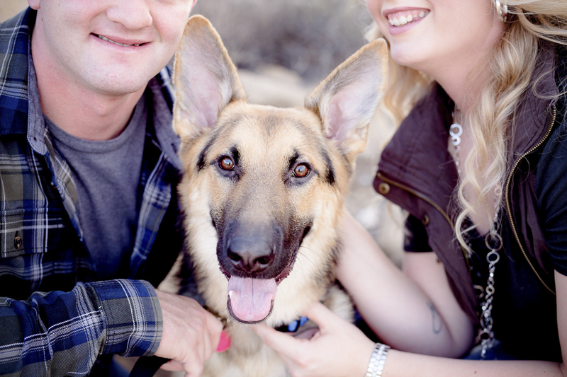 ©Marisa McDonald Photography, tips for including dogs in engagement photos, German Shepherd