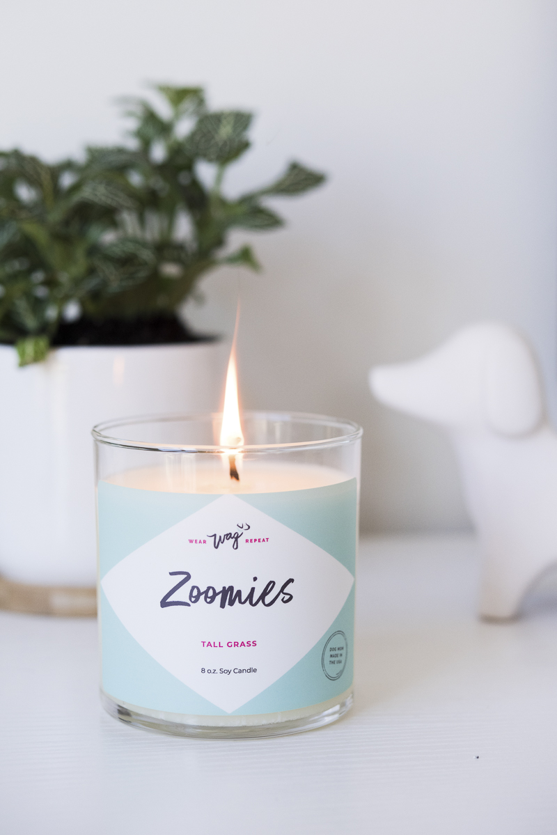 dog-safe candle on desk | Wear Wag Repeat Zoomies candly