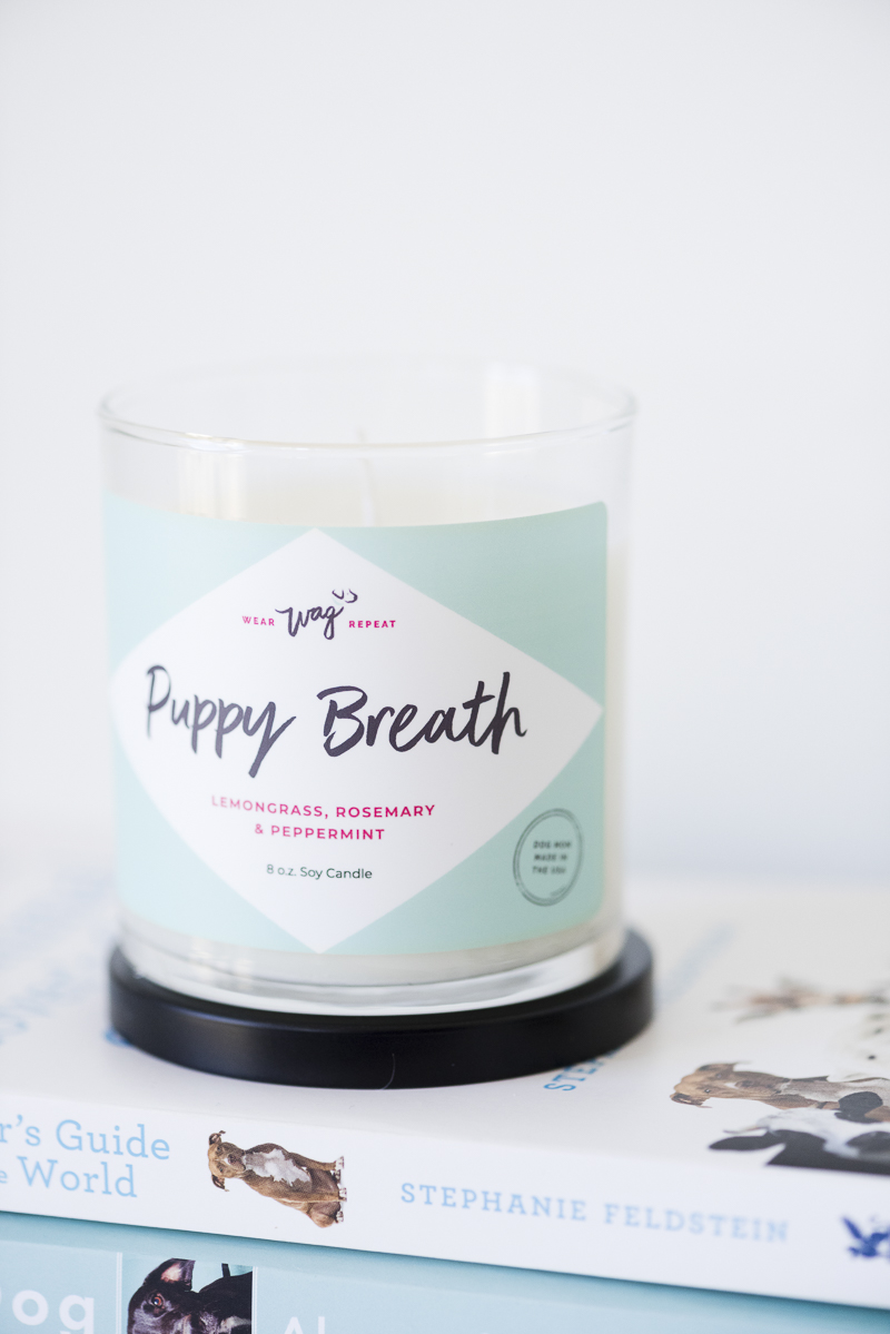 candle eliminates dog odors, ©Alice G Patterson Photography