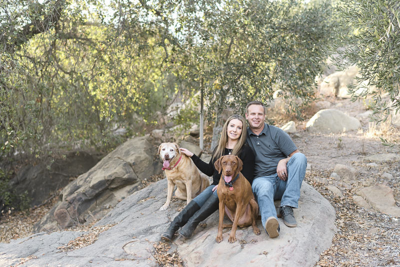 couple and their dogs sitting on rock, ©Jennifer Lourie Photograpy dog-friendly family portraits
