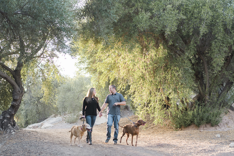 couple walking their dogs, ©Jennifer Lourie Photograpy | family photos with dogs Ojai, CA