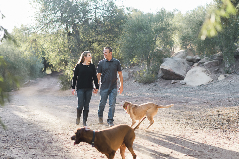 dogs playing offleash, Ojai Olive Oil | ©Jennifer Lourie Photograpy
