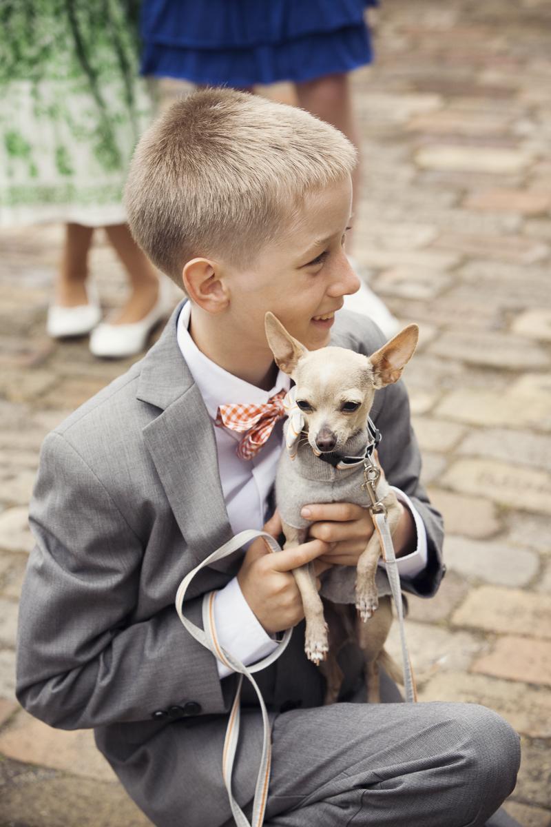 little box in tux holding Chihuahua, wedding dog ©Stephanie Cristalli Photography | dog-friendly wedding