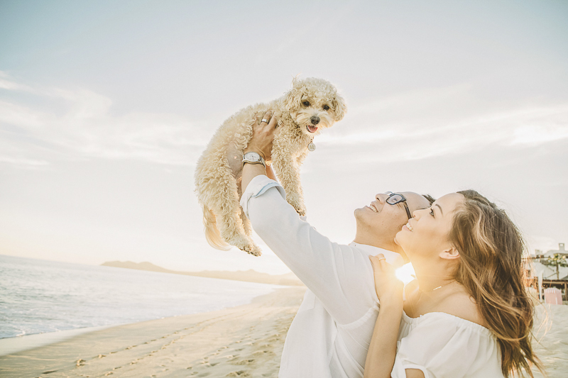 "couple holding Poodle mix up ""lion king style"" at the beach, Daniel Jireh Photographer, Cabo San Lucas, Mexico"