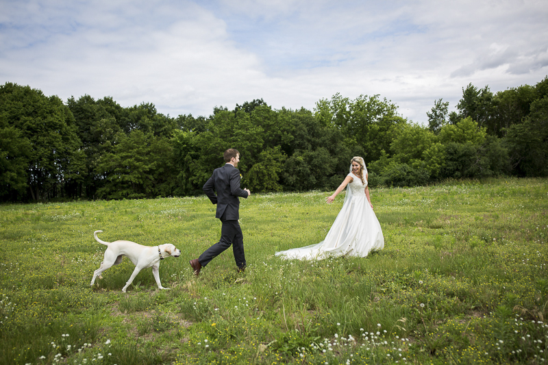 bride, groom, and Yellow lab mix in grassy field, ©Penny Photographic   Minnesota wedding photography, dog-friendly wedding