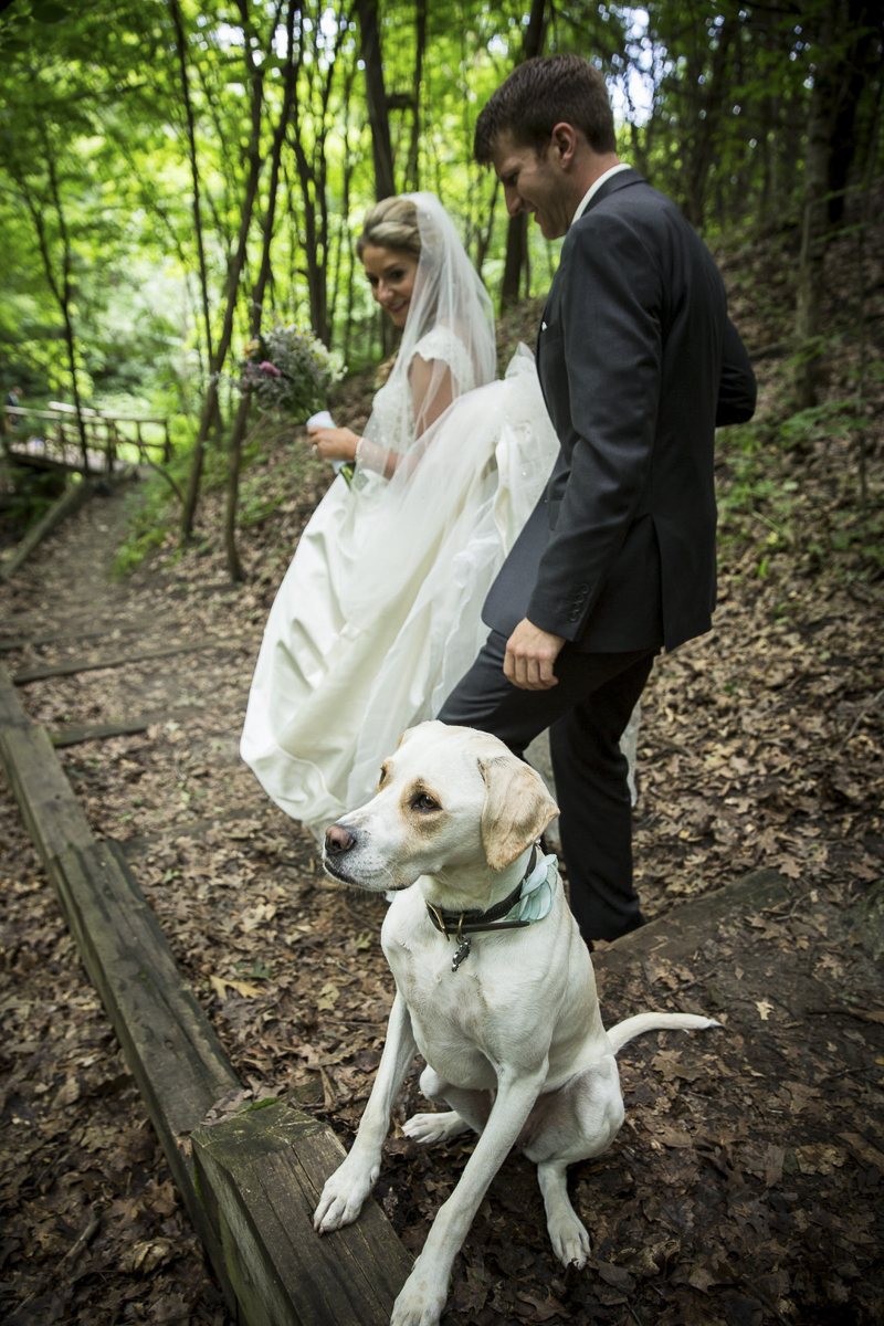 bride, groom and dog in the woods   ©Penny Photographics   Minnesota wedding photography for adventurous couples, dog-friendly wedding