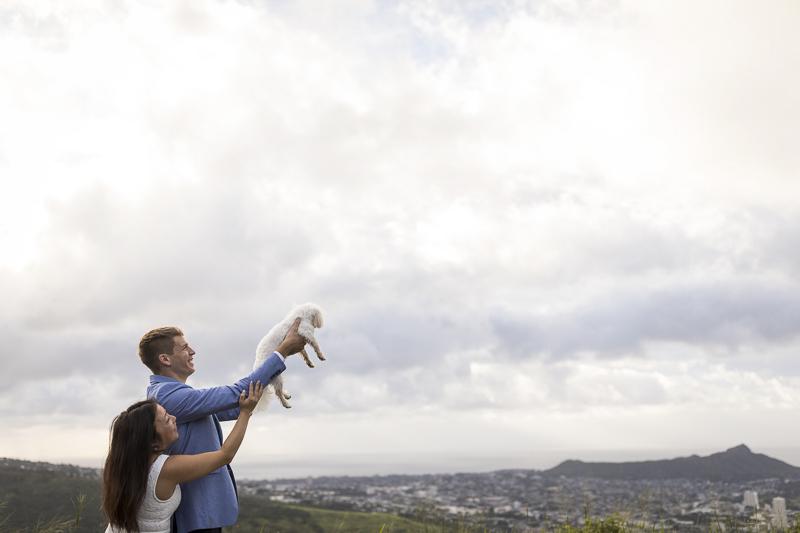 dog-friendly engagement photos in Honolulu, Maltese ©VIVIDfotos