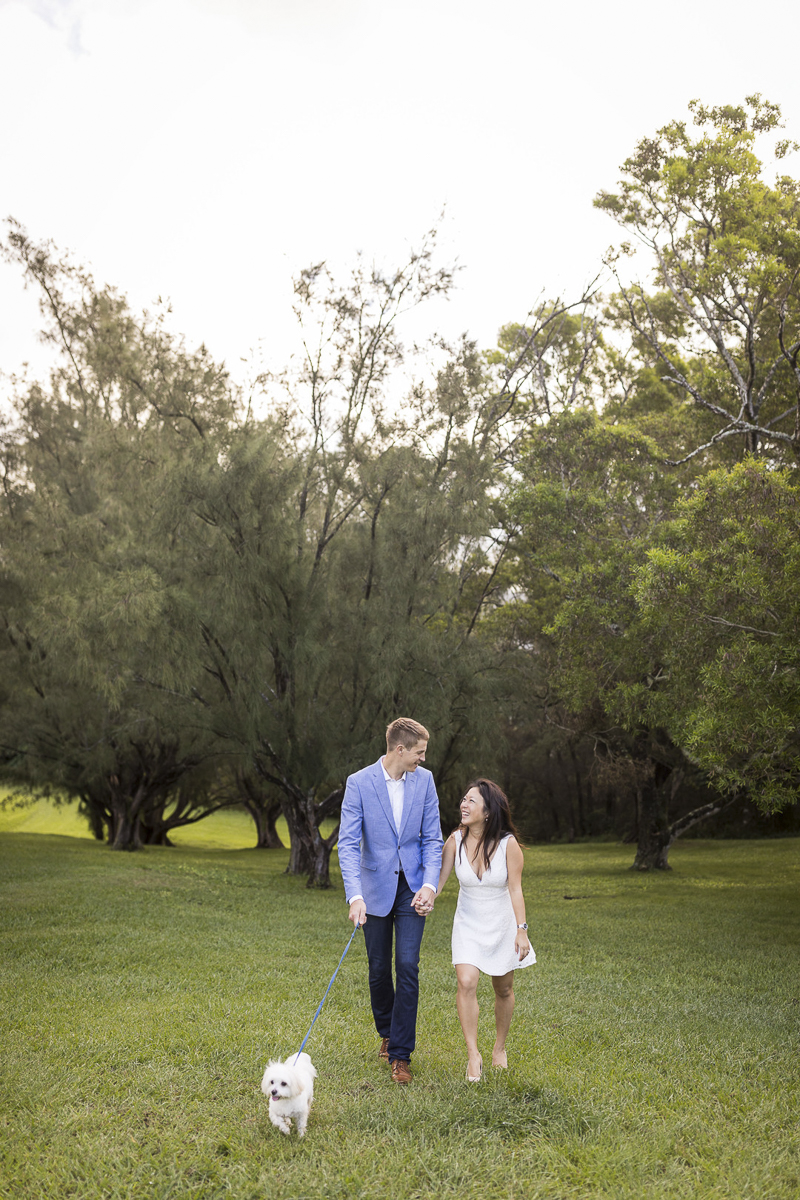 couple walking their small white dog through grassy area, VIVIDfotos-engagement photos with Maltese, Honolulu, HI
