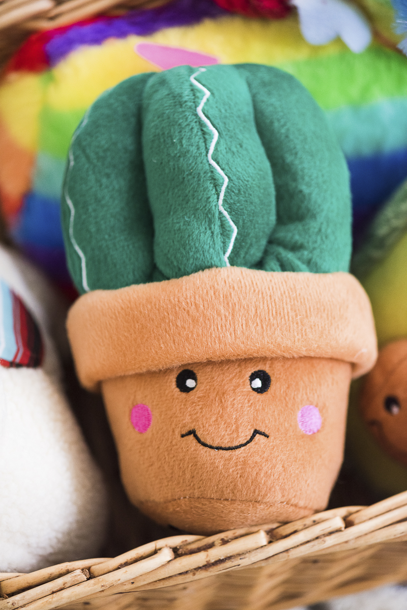 plush cactus toy for dogs