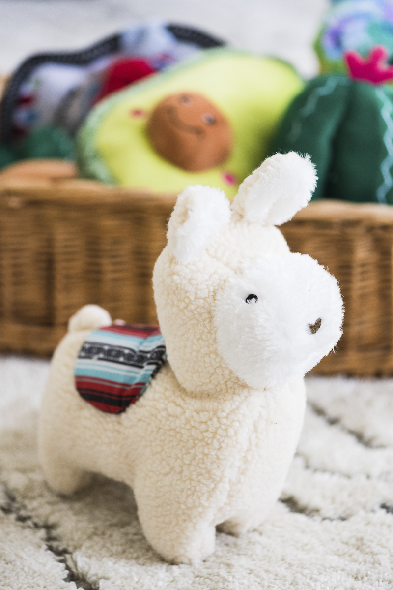 Liam the llama, adorable plush toy for dogs, ©Alice G Patterson Photography | ZippyPaws fiesta toy review