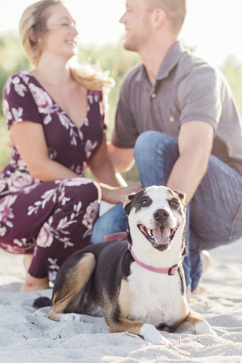 Beach engagement session with a dog, ©Liz Cowlie Photography – Melbourne Beach, Florida