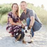 Engaging Tails:  Collie-Heeler Mix in Melbourne Beach, Florida