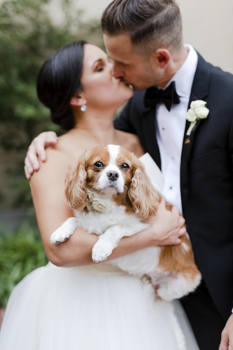 wedding dog, bride and groom, | ©Luke & Ashley Photography | Nothern Virginia Wedding Photography