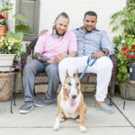 Happy Tails: A Bull Terrier In  Old Town Alexandria
