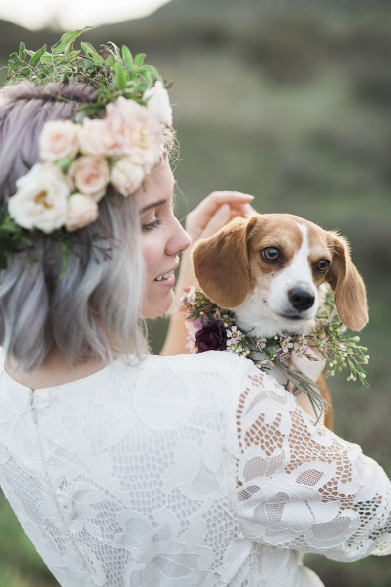 woman in white dress holding small Beagle mix, wedding dog inspiration, ©My Sun And Stars | San Diego dreamy styled shoot with dogs and flowers