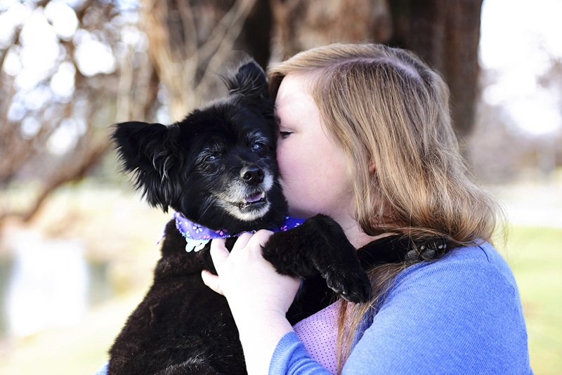 love between dogs and humans, woman holding her senior Pomeranian mix