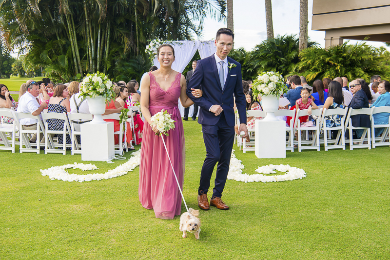 Shih Tzu-Yorkie mix, dog-friendly wedding | ©Toni Jade Photography