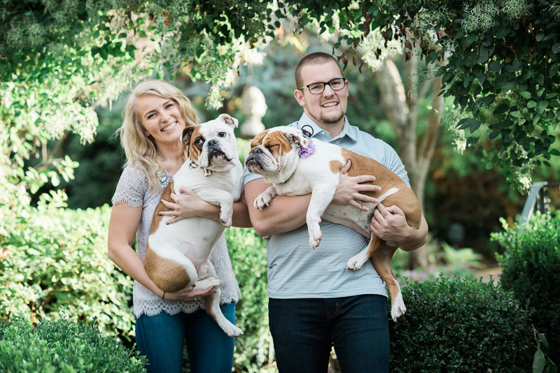 couple holding their furbabies, English Bulldogs | ©Allie Siarto & Co. Photography, engagement photos with dog