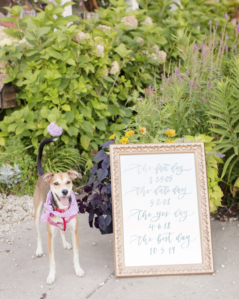 Foxhound/husky/staffy mix and save the date sign | ©Idalia Photography