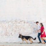 Engaging Tails:  Chipper Bones In Raleigh, North Carolina